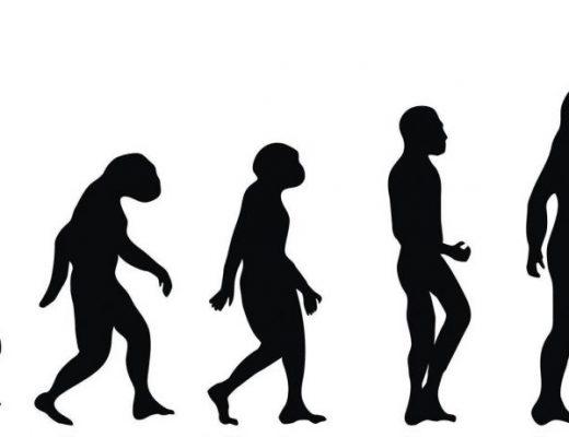 evolutive